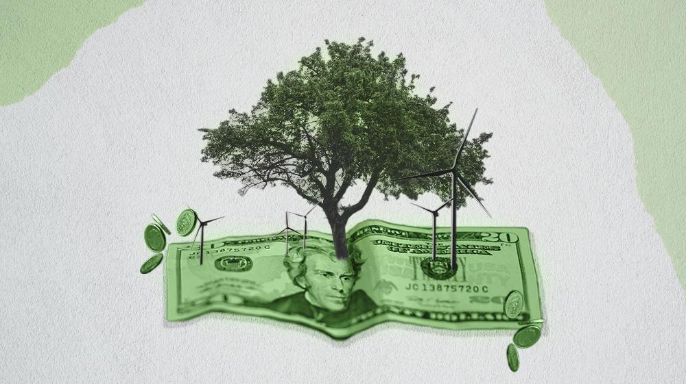 Dinero Verde Finanzas Sostenibles